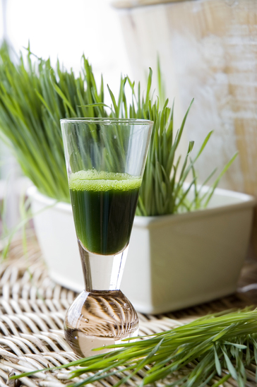 best wheatgrass juicers reviews